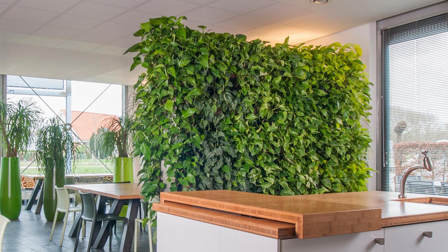Muur met bladeren in interieur